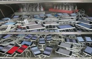 Pegatron Employee Makes iPhone 5Cs Picture Public