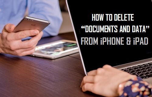 delete document and data